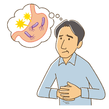 夏と胃の不調の関係性
